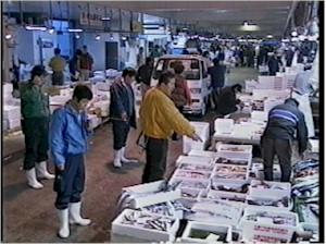 長崎魚市場の24時間-第6章 仲卸...